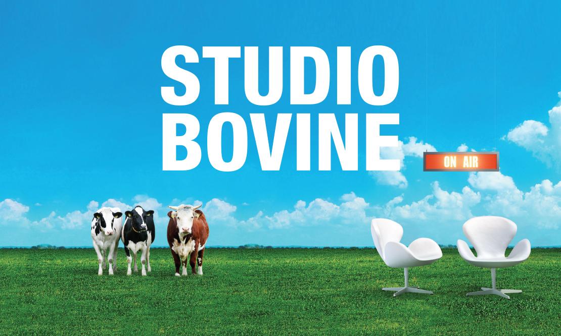 Studio Bovine / MSD Animal Health