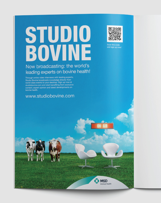 A+M-Studio-Bovine-4