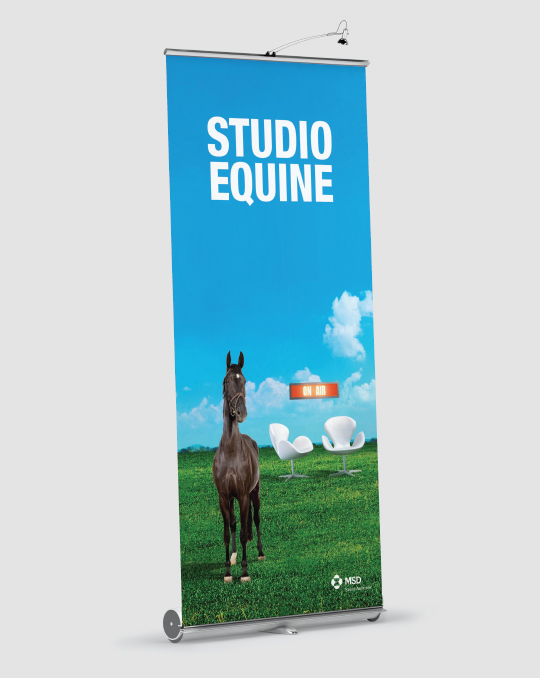 A+M-Studio-Bovine-5