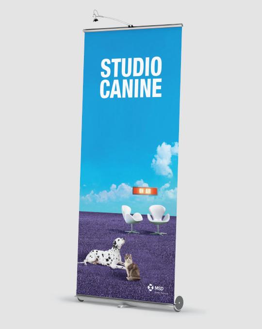 A+M-Studio-Bovine-5B