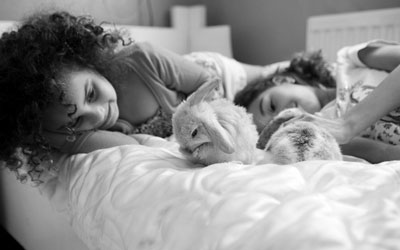 Nobivac Bunnies in bed Image bank A+M